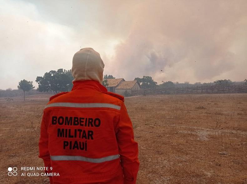 Piaui registra aumento de focos de queimadas e ocupa 2ª colocação no Nordeste