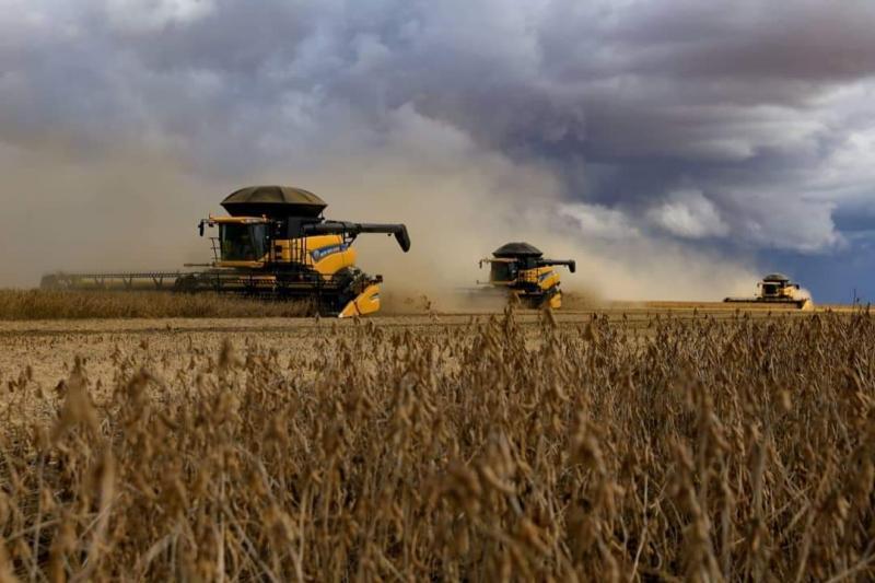 Segundo maior produtor de grãos do Piauí, Uruçuí se destaca em 2020