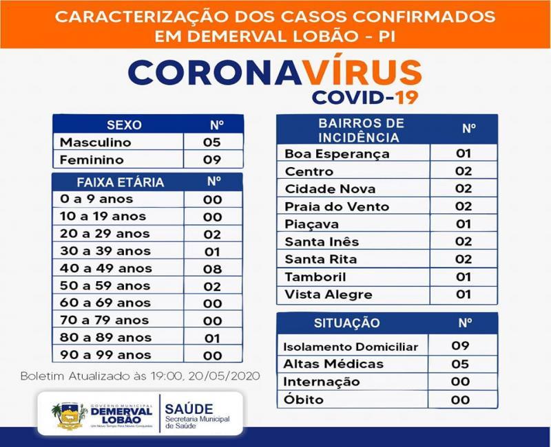 Situação epidemiológica das notificações da Covid-19 em Demerval Lobão
