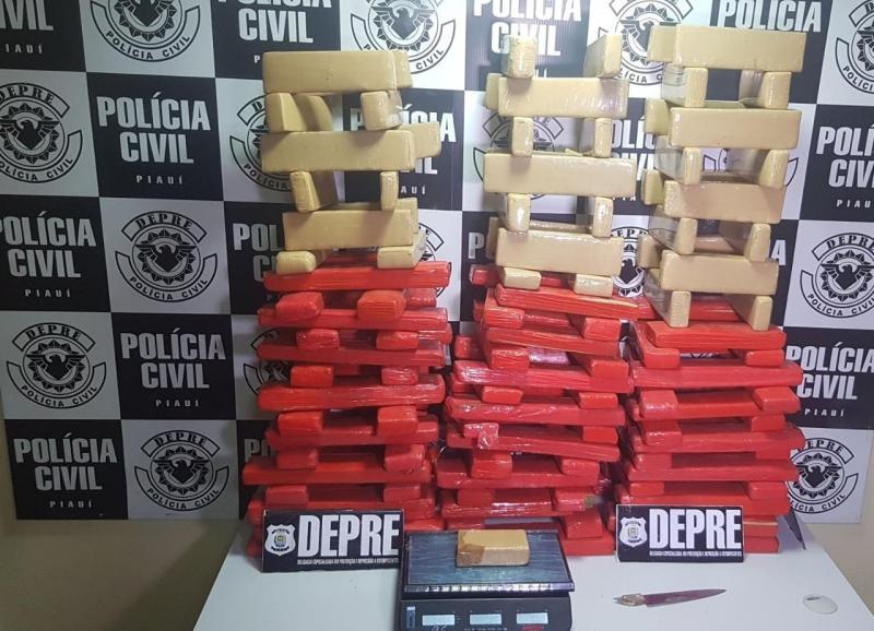 Depre apreende mais de 130 quilos de drogas na Zona Norte de Teresina