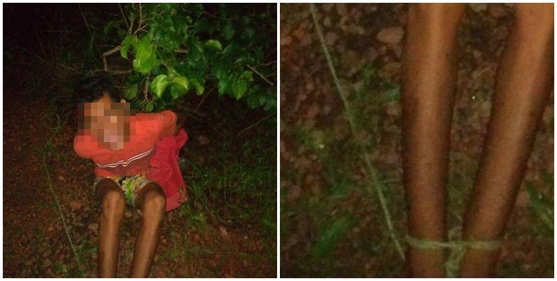 Menor é amarrado, agredido e deixado em enxame de abelhas após furto no Piauí