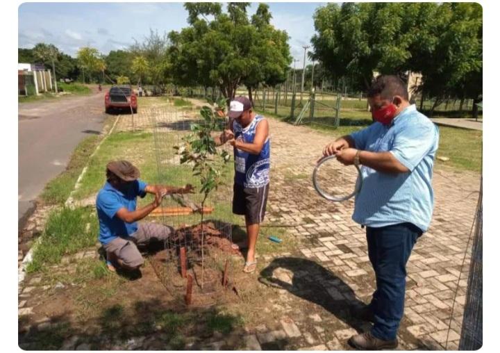 Prefeitura de União realiza reparos e plantio de mudas no Parque Beira Rio
