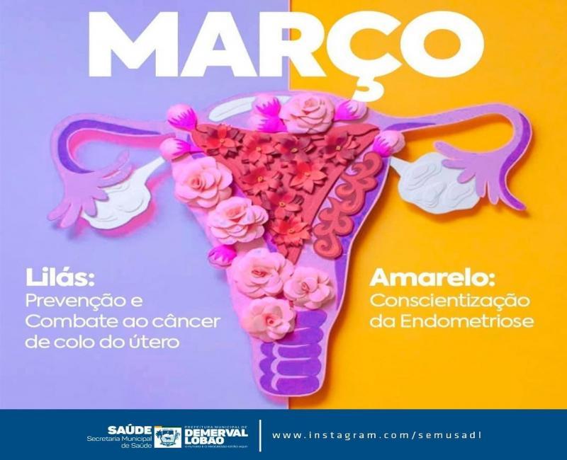 Campanha 'Março lilás' contra o câncer do colo uterino | Demerval Lobão