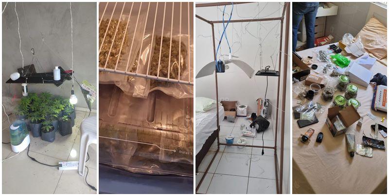DEPRE desarticula laboratório de drogas sintéticas e prende filho de juiz no Piauí